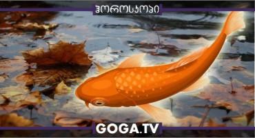 ოქტომბრის ასტროლოგიური პროგნოზი თევზებისთვის - ჯანმრთელობა, ფული და სიყვარული