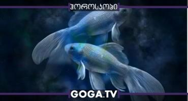 მაისის ასტროლოგიური პროგნოზი თევზებისთვის - სწავლა, ბიზნესი, კონტაქტები, ჯანმრთელობა, ფული და სიყვარული