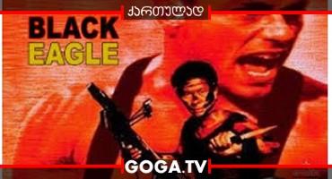 შავი არწივი / Black Eagle